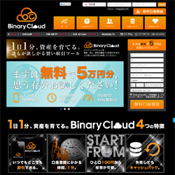 Binary Cloudの画像